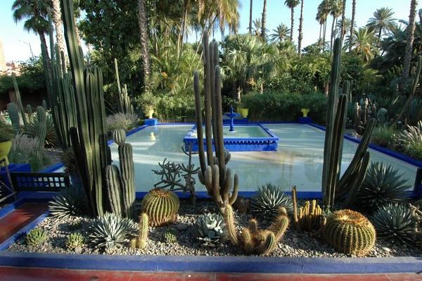 Majorelle Garden - Marocco Sept05